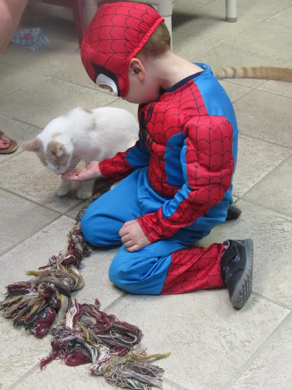 Little Spiderman enjoys time playing with a possible new addition to the family.