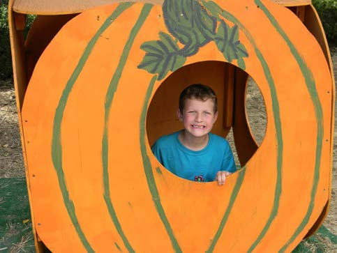 An overjoyed child posed for a picture as he played in the Pumpkin Patch.