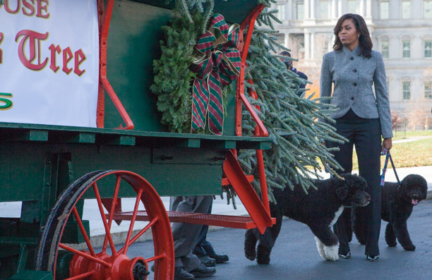 First Lady Michelle Obama receives the official White House Christmas tree with left to right, First dogs, Bo and Sunny.  PHOTO: Cheriss May, Howard University News Service