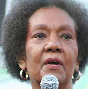 """Dr. Frances Cress Welsing is noted for her """"Cress Theory of Color Confrontation,"""" which explores the practice of White supremacy. This photograph was taken during the  10th Annual National Black L.U.V. Festival in Washington D.C. on September 21, 2008.  (Elvert Xavier Barnes Photography/Creative Commons)"""
