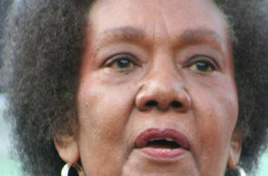 "Famed psychiatrist, ""Isis Papers"" author Frances Cress Welsing dead at 80"