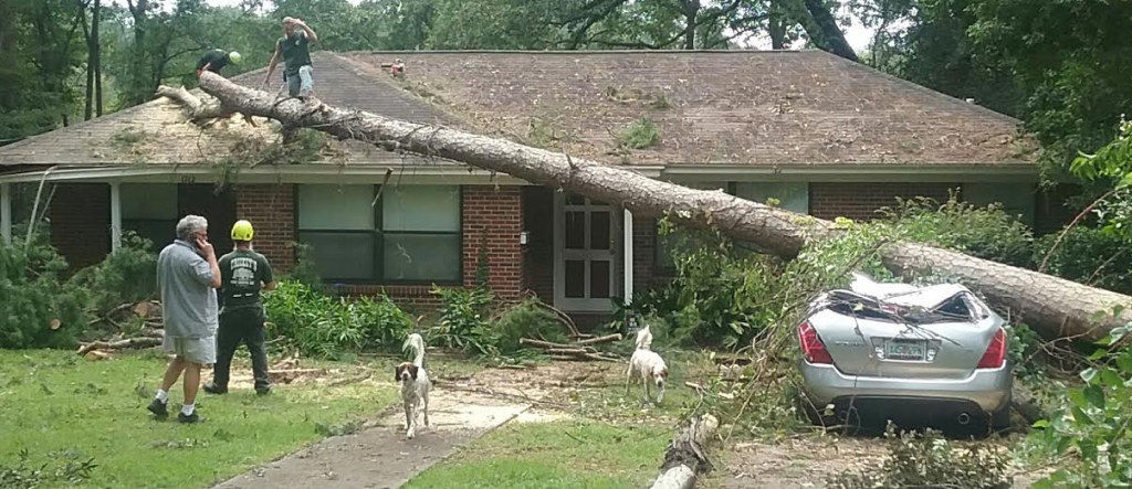 Hurricane Hermine devastated several areas on the south side, including Myers Park where a family house and car damage. Photos by St. Clair Murraine