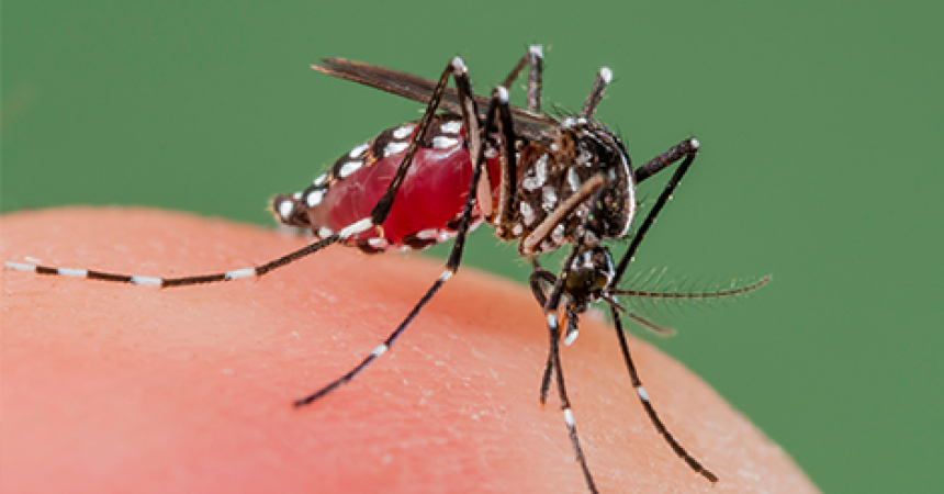 FSU scientist starts research for early detection of zika
