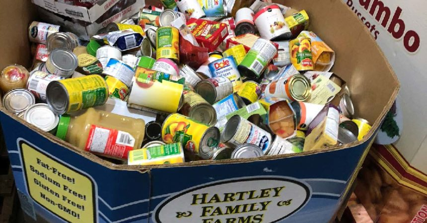 Stuff the Bus: A food drive against hunger