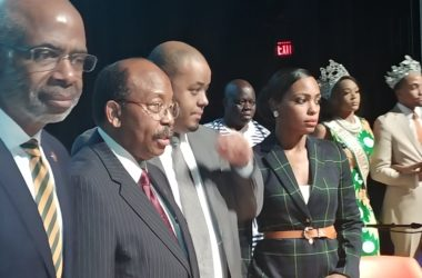 Panel discussion on Black vote energizes town hall crowd