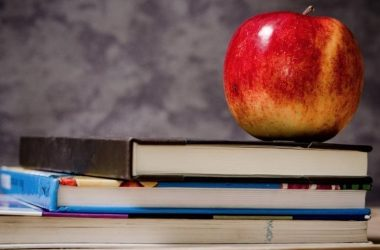 Appeals court sides with state in school reopening fight